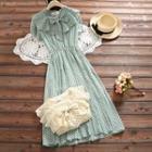 Sleeveless Dotted Ruffle A-line Chiffon Dress