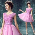 Applique Tulle Mini Prom Dress