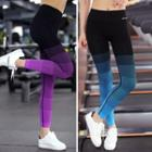 Gradient Workout Pants