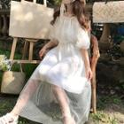 Ruffled Mesh Maxi Dress