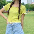 Lace Trim Short Sleeve Crop Top