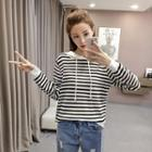 Hooded Striped Knit Pullover