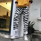 Patterned Shorts / Straight Fit Pants