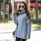 Turtle-neck Cable-knit Top