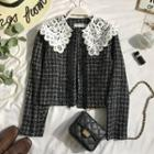 Lace Collar Tweed Jacket