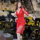 Long-sleeve Sheer Bodycon Dress