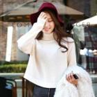 Turtle-neck Cropped Knit Top