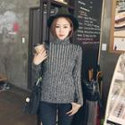 Turtle-neck Rib-knit Sweater