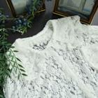 Collared Sheer Lace Blouse White - One Size