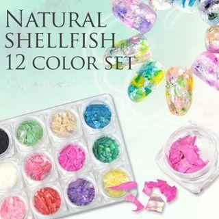 12 Colors Set Shell Fragment Nail Art Decoration 12 Colors Set - One Size