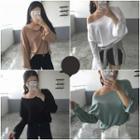 Plain Long Sleeve Sheer T-shirt
