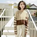 Color Panel Round-neck Sweater