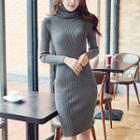 Turtleneck Rib-knit Pencil Dress