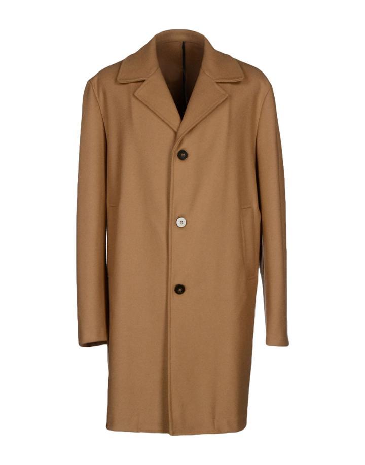Trama Coats