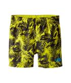 The North Face Kids - Hike/water Shorts